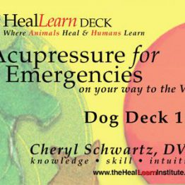 HealLearn Deck: Acupressure for Emergencies