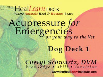 HealLearn Deck: Acupressure for Emergencies