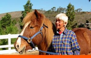 Cheryl-horse-1-1024x651